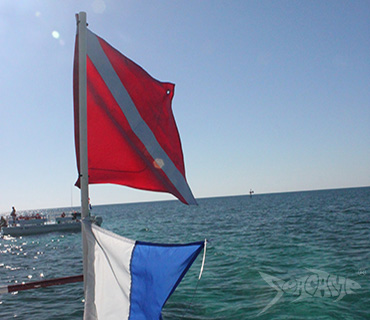 Dive flag on a Seacamp Flattop