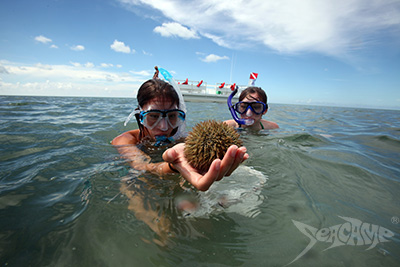 Camper examining a sea urchin while snorkeling Seacamp